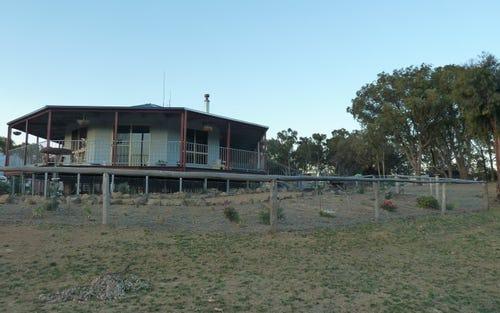 955 Taylorts Flat Road, Taylors Flat NSW
