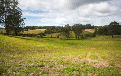 Lot 574 Irvines Road, Newee Creek NSW 2447