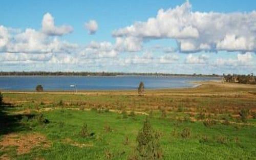 WOOLWASH, Lake Cargelligo NSW 2672