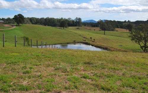 Lot 13 Strawberry Road, Warrell Creek NSW 2447