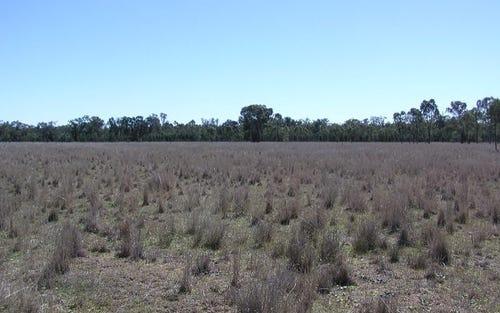 1597 Culgoora Rd, Narrabri NSW 2390