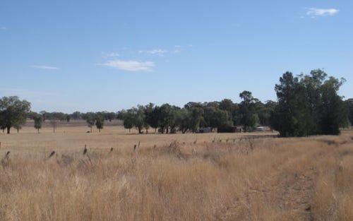 LOT 478 FURNERS LANE, Peak Hill NSW 2869
