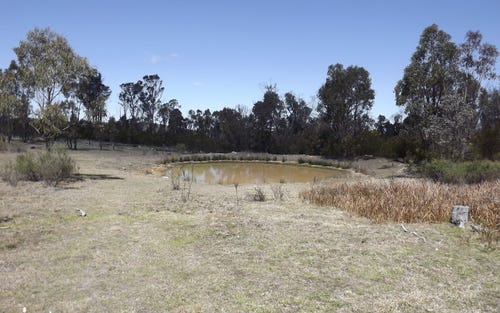 Lot 32 Torrington Road, Torrington NSW 2371