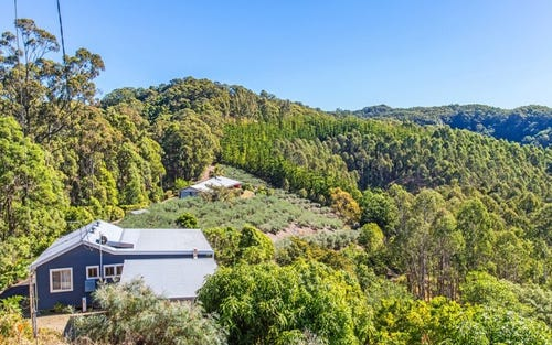 315 Pottsville Road, Sleepy Hollow NSW 2483