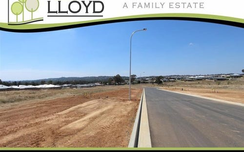 Chang Avenue, Lloyd NSW 2650