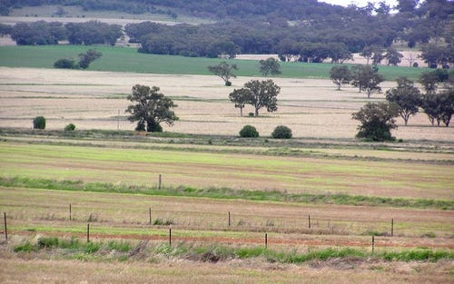Leyburn Valley, Gunnedah NSW 2380