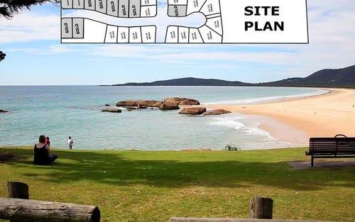 Tallowwood Pl, South West Rocks NSW 2431