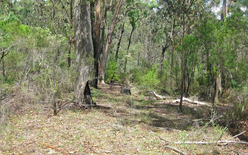 Lot 207, 636 Finchley Track, Wollombi NSW 2325