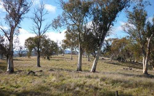 Lot 22 Snowy Mountains Highway, Adaminaby NSW 2629