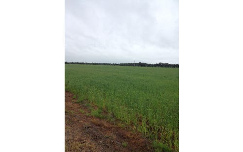 Farm 1045 Pine Drive, Coleambally NSW 2707