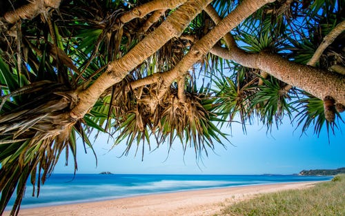 Lot 1024, Red Gum Circuit, Sapphire Beach NSW 2450
