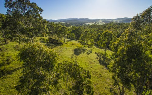 Lot 22 Black Camp Creek Road via Toocan Lane Flat Tops, Dungog NSW 2420