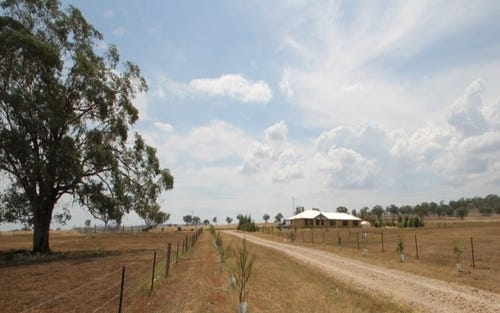 . Bells Gate Road, Quirindi NSW 2343