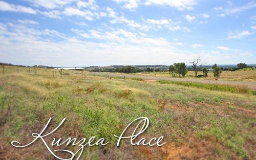 Lot 7 Kunzea Place, Springvale NSW 2650