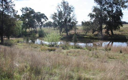 Lot 2 Shepherds Lane, Gulgong NSW 2852