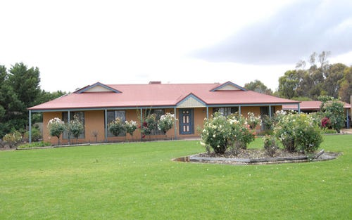 127 LAWSON SYPHON ROAD, Deniliquin NSW 2710