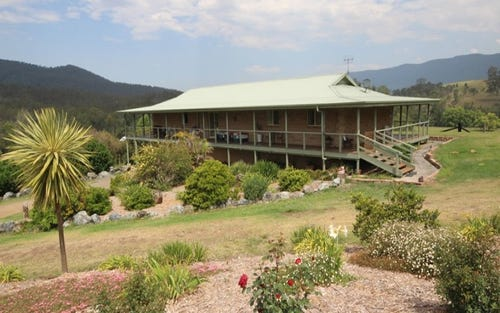 1691 Nowendoc Road, Mount George NSW 2424