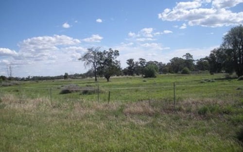 Lot 396 Bulgandramine Road, Peak Hill NSW 2869
