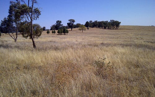 Eugowra Road, Parkes NSW 2870