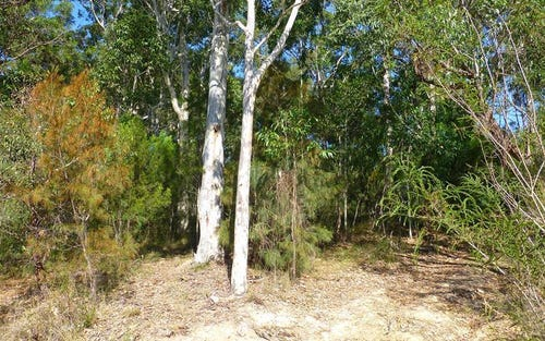 Lot 336, 41 Albatross Road, Catalina NSW 2536