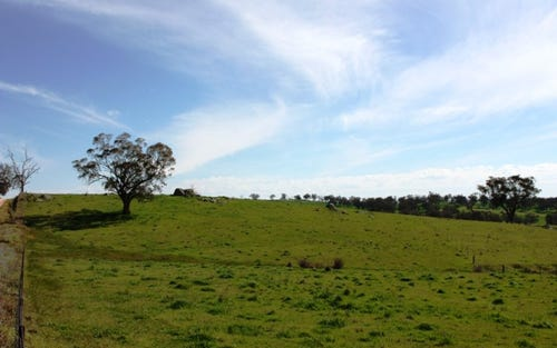 Lot 1 & Lot 2 Wickham Lane, Young NSW 2594