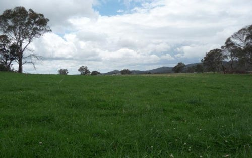 605 Mt Mitchell Rd, Glen Innes NSW 2370