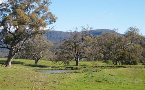 Lot 12 Presses Road, Willow Tree NSW 2339