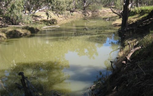 . WATER FOR SALE LACHLAN RIVER, Hillston NSW 2675