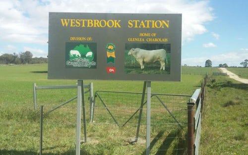 513 Westbrook Road, Guyra NSW 2365