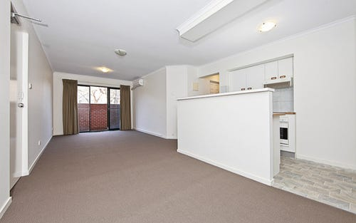 3/10 Ovens Street, Griffith ACT