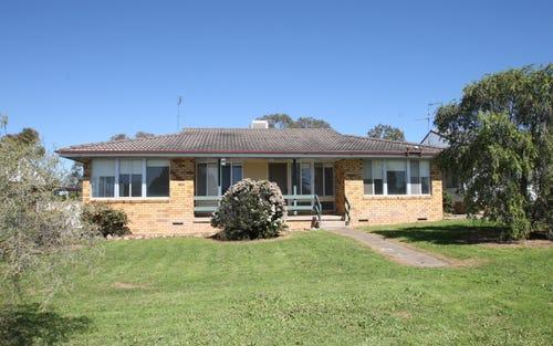 42 Nowland Avenue, Quirindi NSW 2343