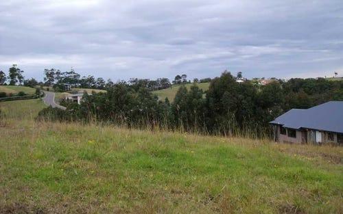 59 Hilltop Parkway, Tallwoods Village NSW 2430