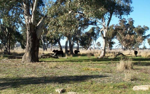 Lot 1 West Jindalee Road, Cootamundra NSW 2590