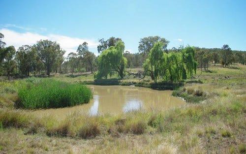 1072 Limekilns Road, Tambaroora NSW 2795