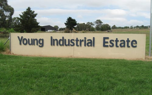 Lot 10, Old Temora Road, Young NSW 2594