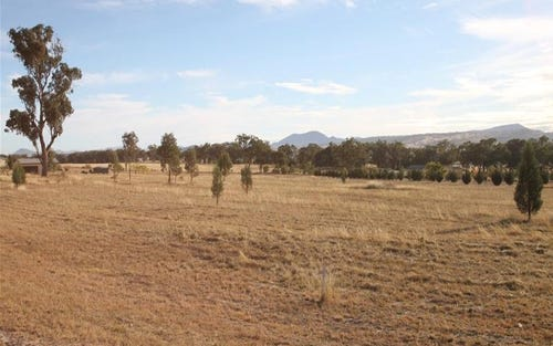 1 Greentrees Drive, Quirindi NSW 2343
