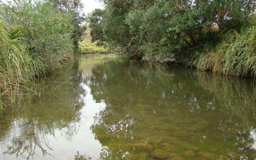 Lot 2 Belbora Creek Road, Belbora, Gloucester NSW 2422