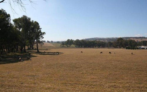 1955 Davys Plains Road, Cargo NSW 2800