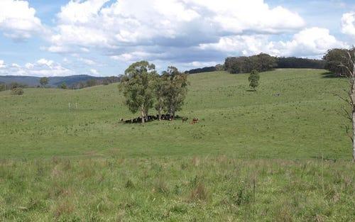 GARRIBALDI, Walcha NSW 2354