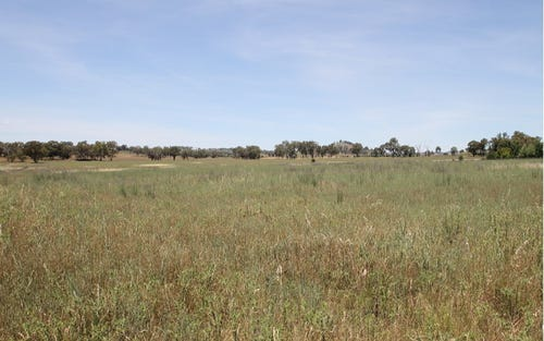 1, 168 & 6, 168 Bergalin Road, Gulgong NSW 2852