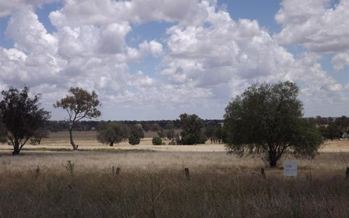 Lot 405 Newell Highway, Trewilga NSW 2869