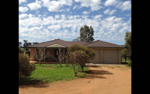 181 WEBB SIDING ROAD, Narromine NSW 2821