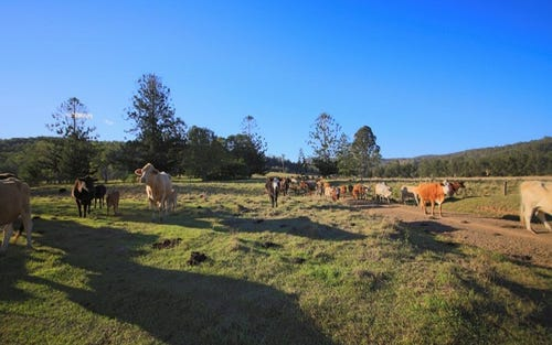 Lots 195 & 178 Smiths Creek Road, Copmanhurst NSW 2460
