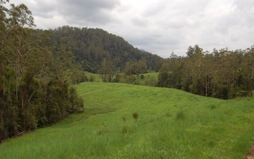 Proposed Lot 1 Darkwood Road, Thora, Bellingen NSW 2454