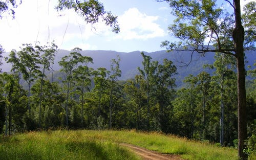 Lot 150 Darkwood Road, Bellingen NSW 2454