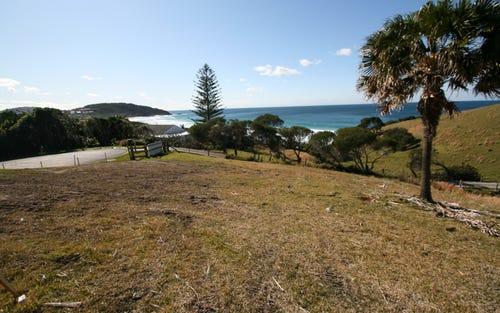 119 (Lot 17) Newman Avenue, Blueys Beach NSW 2428