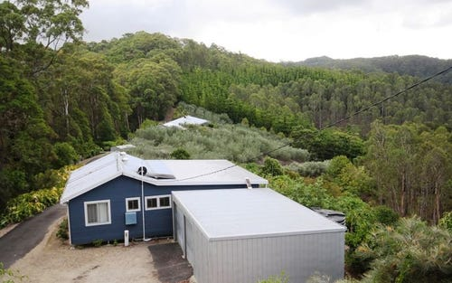 315 Pottsville Road, Pottsville NSW 2489