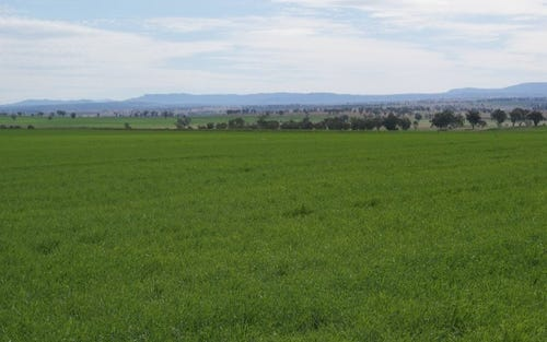 Lot Babbinboon Rd, Somerton NSW 2340