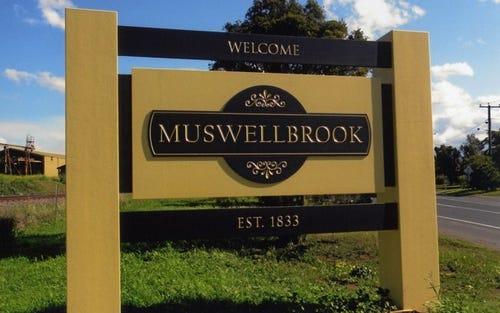 Lot 315, 47 Osborne Avenue, Muswellbrook NSW 2333