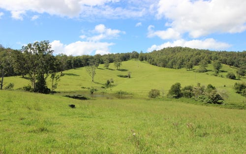 Lot 1 / 991 Pappinbarra Road, Pappinbarra NSW 2446
